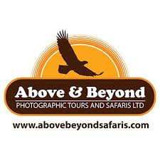 Above & Beyond Photographic Safaris